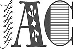 sei-su-immagine-raffigurante-logo-iac