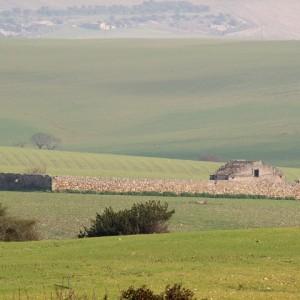 sei-su-immagine-raffigurante-uno-iazzo-interamente-costruito-con-pietrame-a-secco-nei-pressi-della-cripta-del-peccato-originale