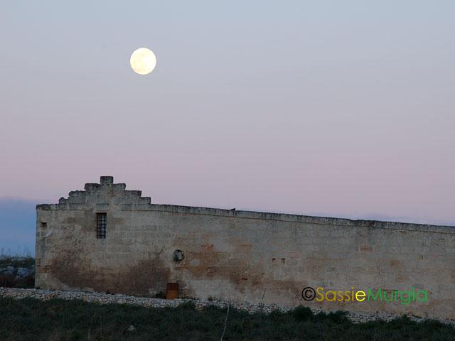 sei-su-immagine-raffigurante-lo-iazzo-gattini-al-tramonto