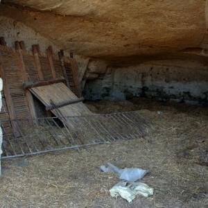 sei-su-immagine-raffigurante-una-stalla-rupestre-a-servizio-della-masseria-fortificata-selva-venusio