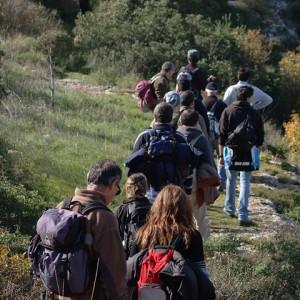 sei-su-immagine-raffigurante-un-gruppo-di-escursionisti-a-piedi-sulla-murgia-materana