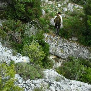 sei-su-immagine-raffigurante-la-macchia-mediterranea-nel-parco-naturale-regionale-della-murgia-materana