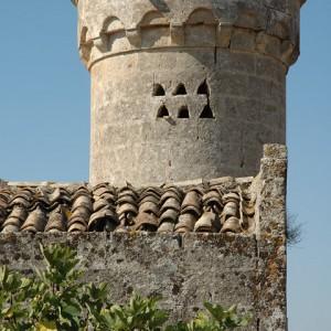 sei-su-immagine-raffigurante-la-torre-della-masseria-fortificata-selva-venusio