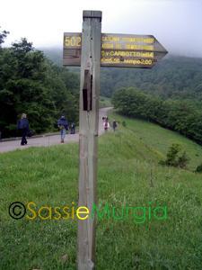 Sei-su-immagine-raffigurante-palina-contenente-indicazioni-dei-sentieri-del-parco-naturale-regionale-di-gallipoli-cognato