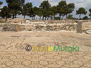 sei-su-immagine-raffigurante-mosaici-romani-in-area-archeologica-di-venosa