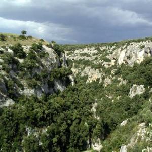 sei-su-immagine-raffigurante-cespugli-di-macchia-mediterranea-sulle-rupi-scoscese-della-Gravina-di-matera
