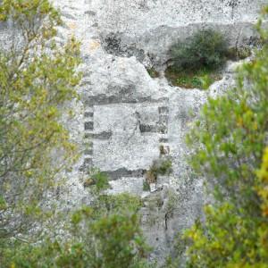 sei-su-immagine-raffigurante-tra-le-fronde-degli-alberi-un-antico-scavo-per-impianto-di-ponte-sul-torrente-Gravina