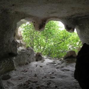 sei-su-immagine-raffigurante-la-cripta-del-falco-nel-cuore-della-verdeggiante-gravina-di-picciano