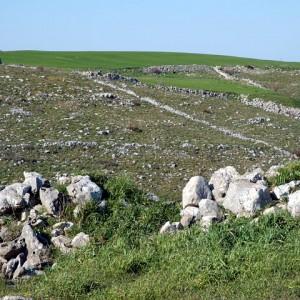 sei-su-immagine-raffigurante-perimetrazione-di-terreni-tramite-muretti-a-secco-nel-parco-regionale-della-murgia-materana